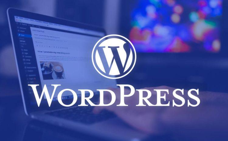 Creare un sito Aziendale Wordpress