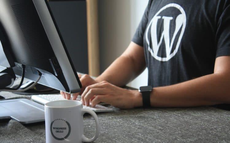 Quanto costa davvero costruire un sito Web WordPress?